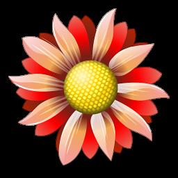 Оперативная и качественная доставка цветов поможет вам удивить близкого человека